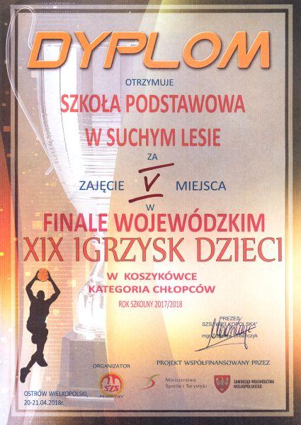 dyplom_koszykowka